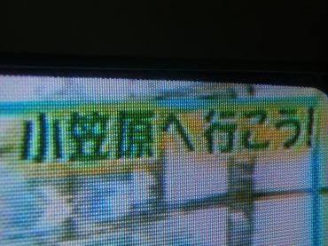 S0810ogasa