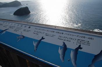 S1219kuji