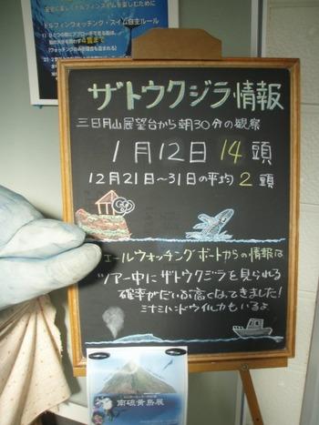 S0115kuji6