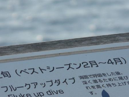 S0301kuji2
