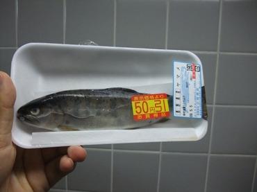 S0506yama
