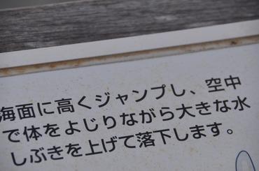 S0116kuji