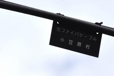 S1119hikari