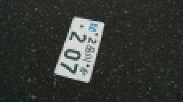 S1119michi2