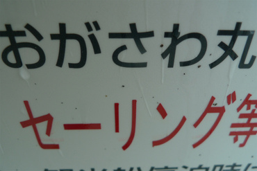 S0515ogasawa