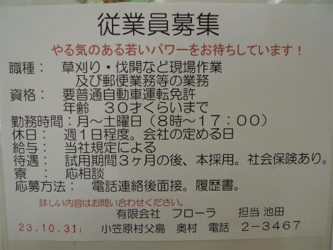 S1101flora