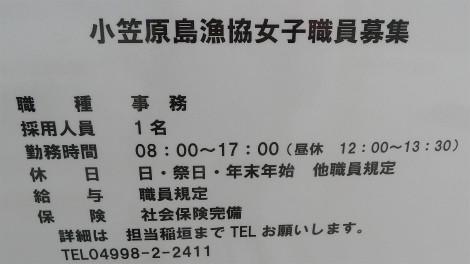 S1015kyu