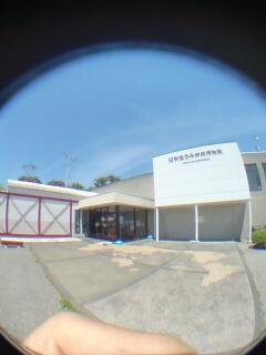日和佐ウミガメ博物館カレッタ