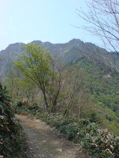 石鎚山が近くに見えてきた1035