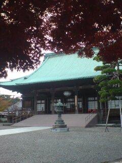 モミジと護国寺