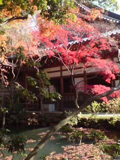 紅葉とお寺