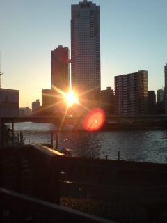 ビルのすき間から夕日